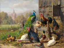 Art Oil painting Jutz Carl - Beautiful birds Peacock Poultry hen cock duck chick