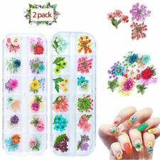 Dried Flowers For Nail Art, 24 Different Colorful Real Flower Green Leaf Nail