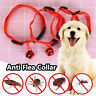 Anti-Mosquitoes Anti Flea Collar Cat Dog Collars Safety Effective Pet Supplies