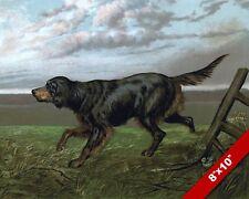 ALERT GOLDEN SETTER PET PUPPY DOG ANIMAL ART PAINTING PRINT ON REAL CANVAS