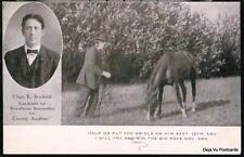 POLITICAL AD Antique Horse Postcard Help Me Bridle Him