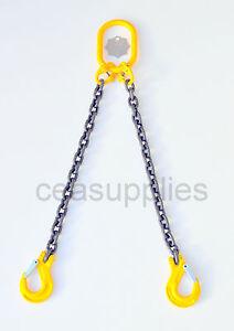 8mm 2 Leg Lifting Chain Sling EWL 2 Metre 2.8 ton Clevis Sing Hook   ID TAG
