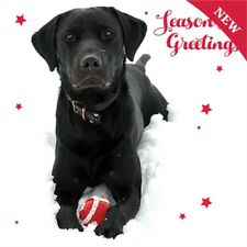 CHARITY Christmas Cards Black Labrador Snow Scene Pack 10 Dog & Ball Xmas Cards