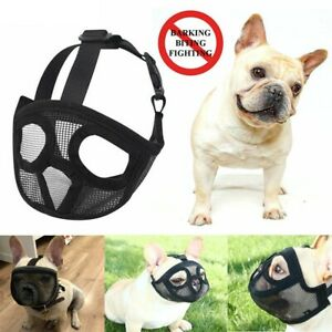 Muzzle For Short Nosed Breed Dogs IE Frenchy Bull Boxer Boston Terrier Flat Nose