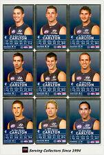 2009 AFL Teamcoach Trading Card Silver Parallel Team set Carlton (11)