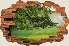 3D Hole in Wall Misty Morning Meadow View Wall Stickers Mural Wallpaper S70