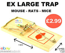 Why Buy Mouse Mice Rat Glue Traps. When You Can Buy The Classic  EX LARGE Trap..