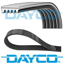 DAYCO V-RIBBED BELT 5 RIBS 810MM AUXILIARY FAN DRIVE ALTERNATOR BELT 5PK810