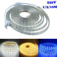 220V 1/5/10m SMD 5050 LED Bande Étanche Lumière De Bande Flexible Maison Décor