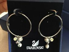 Brand new authentic SWAROVSKI hoop earrings