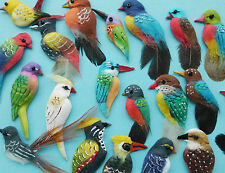 12 Beautiful Real Feather Bird Embellishments for Cardmaking - Pretty Birds Mix