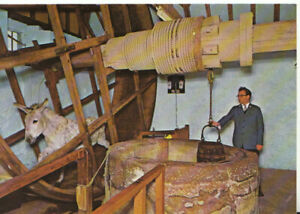 Isle of Wight Postcard - Carisbrooke Castle - The Well and Donkey Wheel - TZ7212