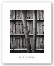 Bamboo and Wall Jeff Zaruba Art Print 11x14