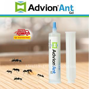 FRESH GENUINE ADVION ANT GEL Syngenta Ant Killer Bait Control - FREE PLUNGER&TIP