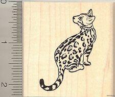 Bengal Cat rubber stamp H10004 WM domestic leopard