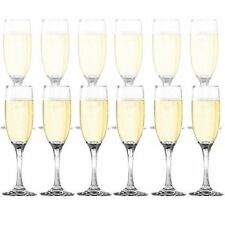 Dailyware Wedding Party Champagne Toasting Flutes Glasses Stemware (Set of 12)