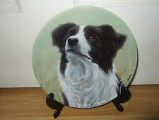 Royal Worcester Border Collie Collectables