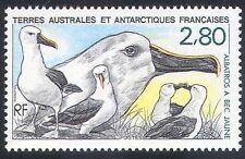 FSAT/TAAF 1990 Yellow Nosed Albatross/Birds/Nature/Wildlife 1v (n23160)