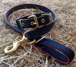 ST25 Webbing Dog Collar & Lead Set Terrier/Lurcher/Gundog/Hound/Spaniel