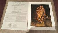 Leopard Print Andrew Bone 9x12 Seriolithograph Park West COA 2016 Safari Africa