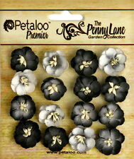 Forget Me Nots BLACK 16 Paper Flowers 20-24mm across Penny Lane Petaloo