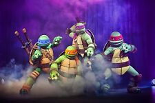 TURTLES A3 GLOSSY POSTER