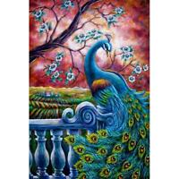 5D DIY Full Drill Diamond Painting Peacock Cross Stitch Embroidery Mosaic *DC