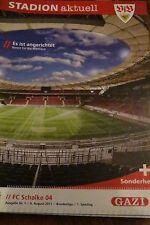 Stadion Aktuell, VFB STUTTGART: FC SChalke 04.,06-08 .2011.