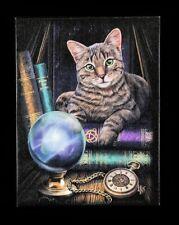 Kleine Leinwand - Fortune Teller by Lisa Parker - Fantasy Katze Magie Wanddeko