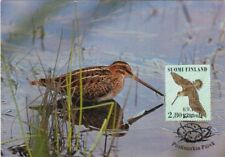 Common Snipe Gallinago Gallinago Mint Art Bird Maxi Card FDC Finland 1996