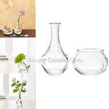 Clear Vase Glass Bottle Shape Flower Pot small Round Vintage Style 17cm 8cm Tall