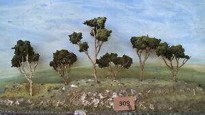 AUSTRALIAN MODEL GUM TREES  HO  OO  Lot 309