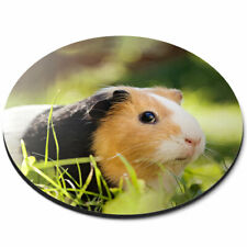 Round Mouse Mat - Tri-Colour Guinea Pig Animals Cute Pets Office Gift #8268