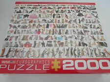 Eurographics World of Cats Kittens Jigsaw Puzzle, 2000 pieces plastic Seal NEW