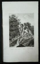 1834:PRATOLINO=COLOSSO APPENNINO=FIRENZE.Toscana.Passpartout.AUDOT.Acciaio.ETNA