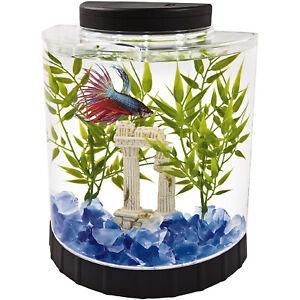 Tetra LED Half Moon Betta Aquarium Kit 1.1 Gallons