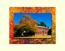 Fall tree colonial house autumn matted picture wall decor fine art photography