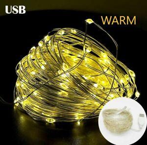 Waterproof Fairy Light LED Mini Christmas Warm Copper Wire String Light Wedding