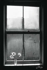 Hope (Window with Flowers) Poster Print, 24x36