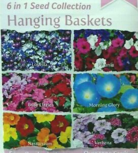 1000+ Hanging Basket Seeds 🌼6 in 1 Flower Collection 🌼 Attract Butterfly Bee