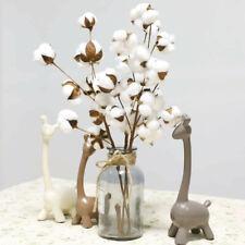 10 Heads Natural Artificial Dried Cotton Flower Home Decorative Cotton Stem