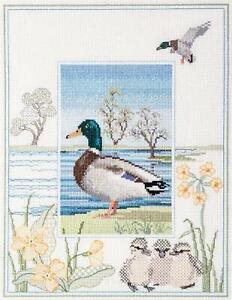 Derwentwater Designs Cross Stitch Kit - Mallard