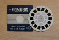 """Viewmaster Reel """"Changing of the Guard at Buckingham Palace"""" reel  # 1007"""