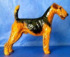 "Royal Doulton Airedail Terrier Rare Vintage Bone China 4"" Figurine HN1023 Mint"