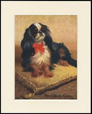 CAVALIER KING CHARLES ENGLISH TOY SPANIEL LOVELY DOG PRINT READY TO FRAME