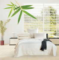 Bamboo Duvet Doona | Quilt | Eco Friendly | 200gsm | Chemical Free | Super King