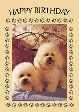 BICHON FRISE TWO DOGS ON BED DOG BIRTHDAY GREETINGS NOTE CARD