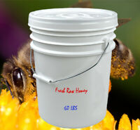 5 Gallons Pure Raw Local Honey from Alberta! -  60 LBS - Bulk Raw Honey