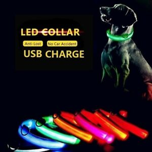 USB Rechargeable LED Battery Dog Pet Collar Light Up Adjustable UK Seller DC8