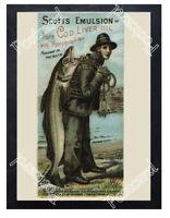 Historic Scott's Emulsion, 1880. Advertising Postcard
